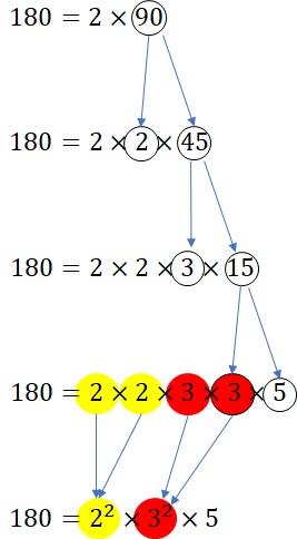 素因数分解流れ図