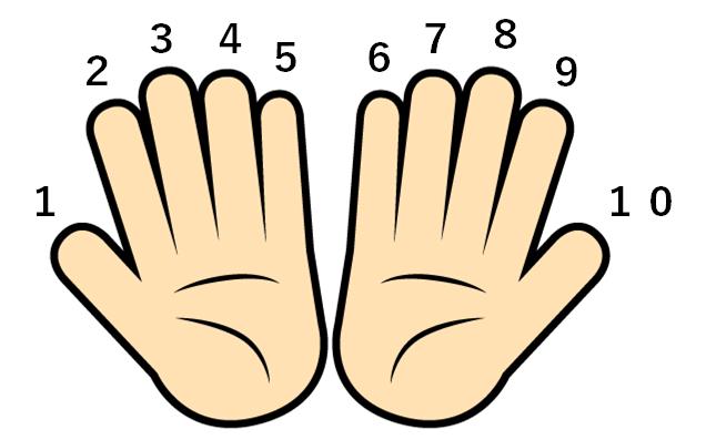 10本の指