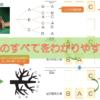 【中学2年数学(確率)】樹形図の書き方 – どんなときでも樹形図が描けるように